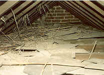 Cornwall Timber & Damp Treatment