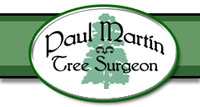 Somerset Tree Surgery Tree Surgeon